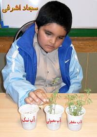 تاثیر نوع آب بر رشد گیاه